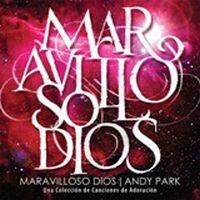 Andy Park - Maravilloso Dios 2011